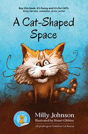 A Cat-Shaped Space cover