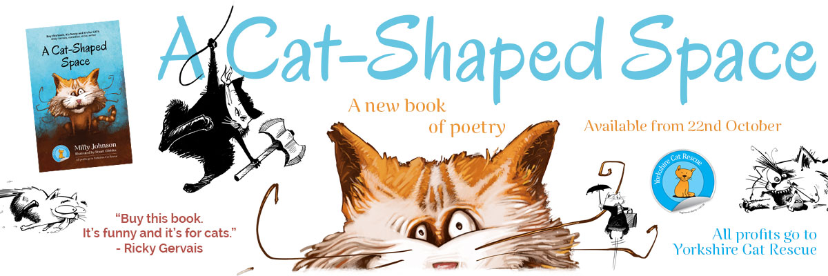 A Cat-Shaped Space by Milly Johnson