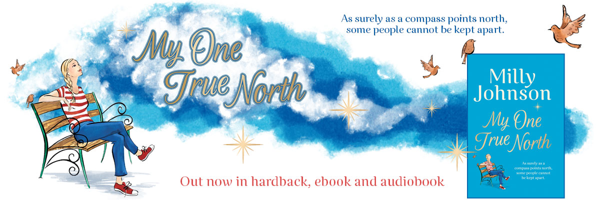My True North by Milly Johnson